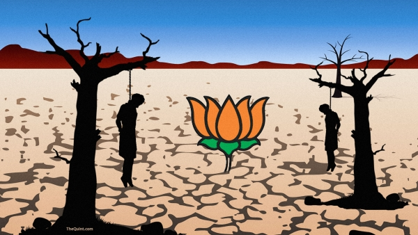 Modi's tall claims on agricultural output, insurance schemes and irrigation don't hold ground against a fact-check. (Photo: Lijumol Joseph/ <b>The Quint</b>)