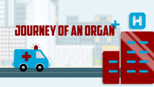 One organ donor can save eight lives and enhance the lives of fifty others.