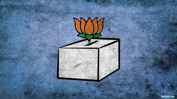 What is in store for the BJP in 2019?