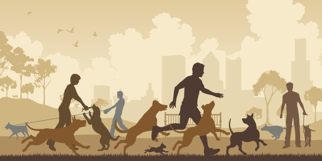 Dog walking was constructed as 'for the dog'; however, owners represented their dog's needs in a way which aligned with their own.