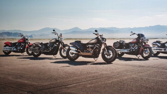 Members of Harley-Davidson Owners Group