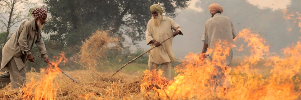 What is stubble burning? How does stubble burning cause smog