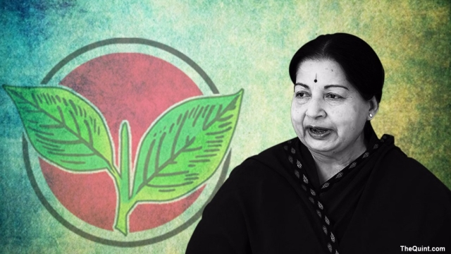 Since the demise of former chief minister Jayalalithaa nearly a year ago, the RK Nagar seat has been vacant.