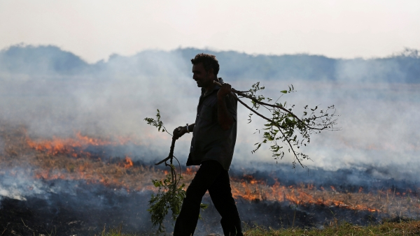 A farmer burns his the stubble left behind after harvesting crops.