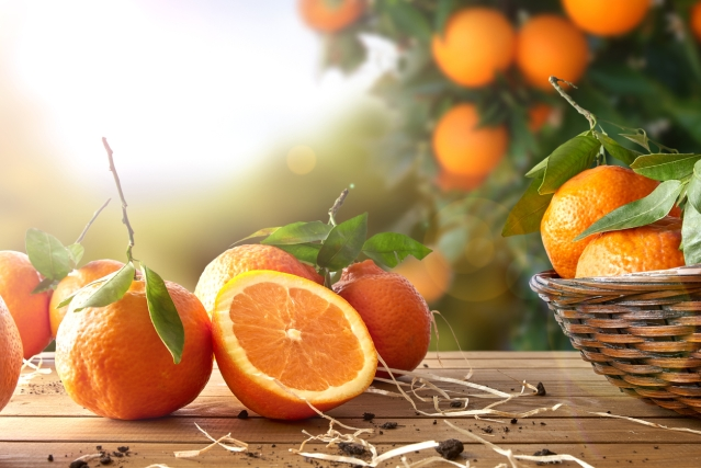 Vitamin C is a rich source of antioxidants.