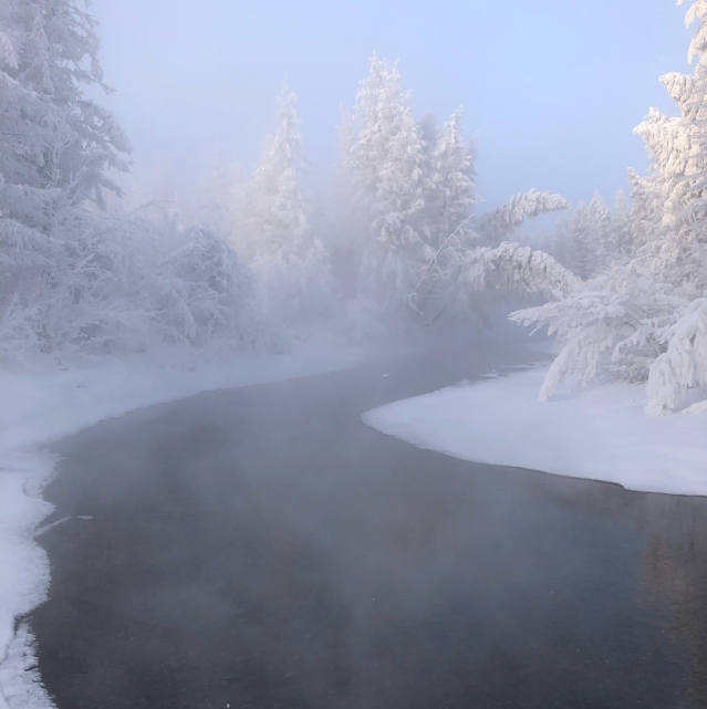 Steamy river surrounded by frozen greenery.