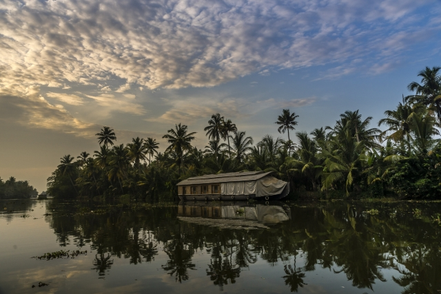 Indian backwater reflection, Kumarakom.