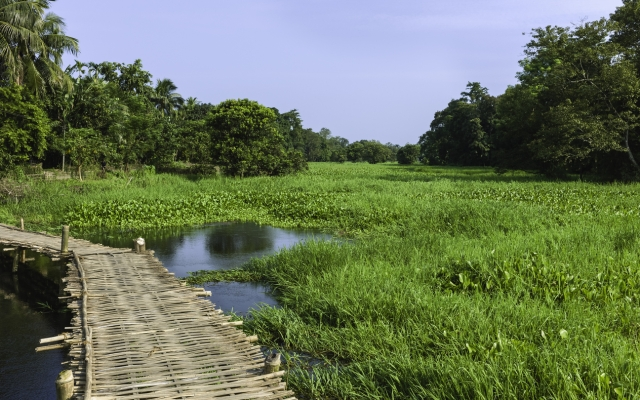 Majuli is an ideal weekend getaway in Assam.