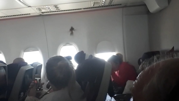 Passengers onboard a flight were pleasantly surprised to find a stowaway bird as their co-passengers.