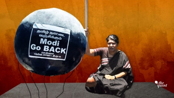 DMK leader Kanimozhi next to a protest symbol in Tamil Nadu. Image used for representational purposes.