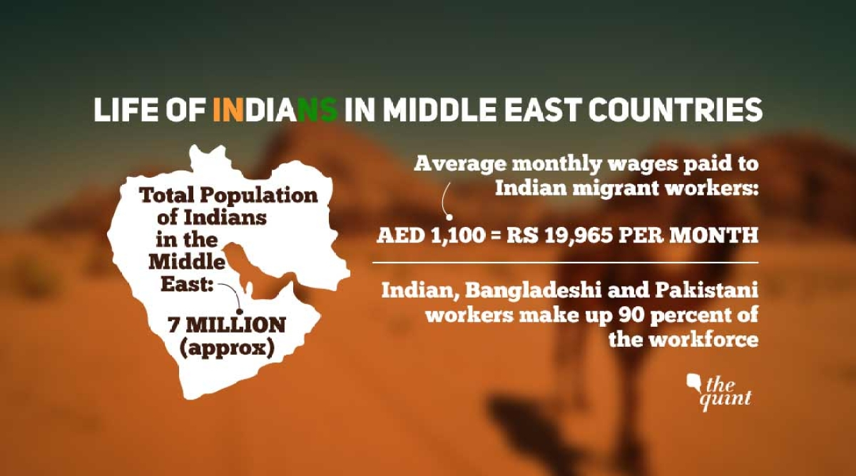 7 Million Indians Are Currently Living in West Asia: Report - The Quint