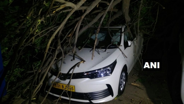 Trees fell on cars as strong winds and dust storm hit Delhi-NCR again.