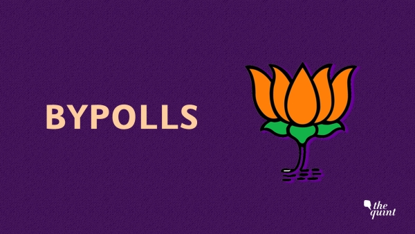 BJP's Bypoll Diary Since 2014: Just 5 Out of 24 LS Seats it Fought