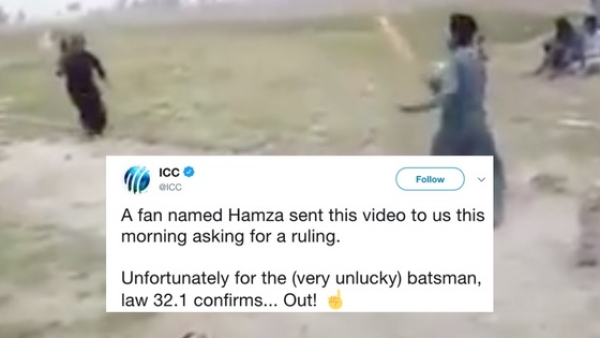 The ICC surprised a fan by acting as the third umpire.