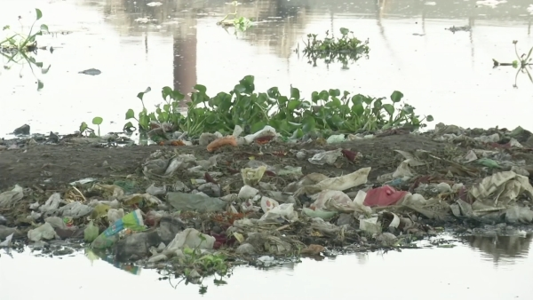 India hosts World Environment Day.