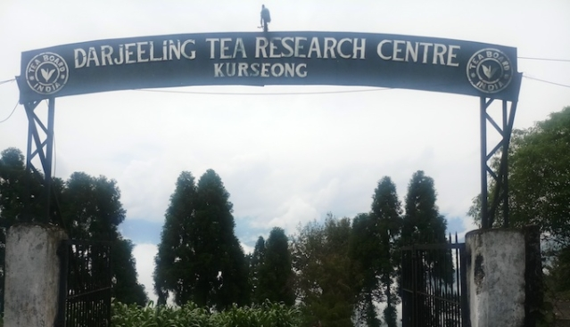 The Darjeeling Tea Research and Development Centre is suggesting several measures to deal with climate change.