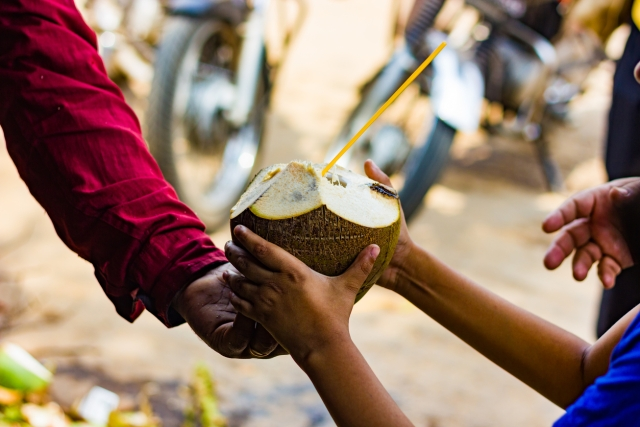 As our summer vacation started, the coconut vendor would become a regular visitor to our colony.