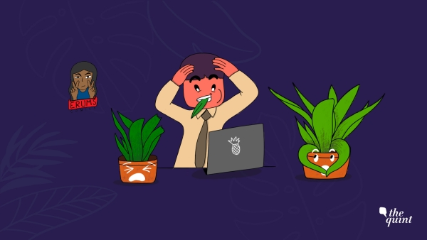 I think it's time that we stopped ignoring our precious office plants.