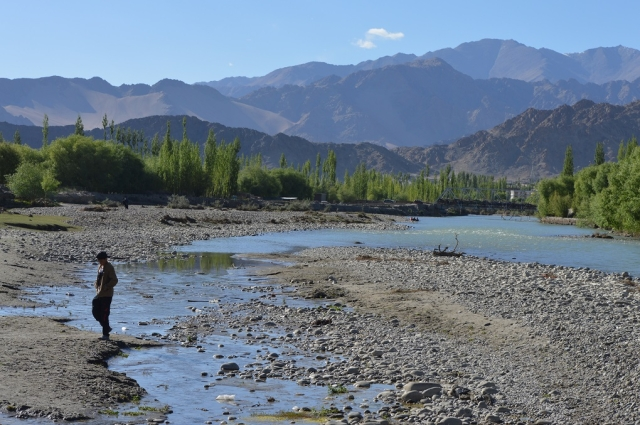 A boy crossing a small channel containing sewage which drains into the Indus near Choglamsar in Leh.
