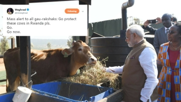 Twitter Laughs at Modi's Promise of 200 Cows to Beef-Eating Rwanda