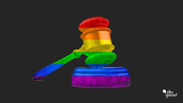 Will the Supreme Court find Section 377 to be unconstitutional?
