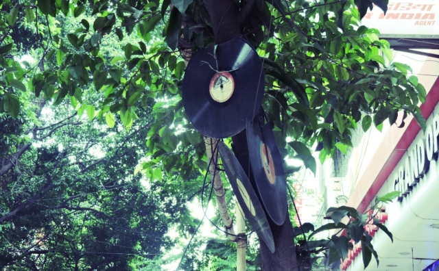 Damaged records recycled and hung from trees.