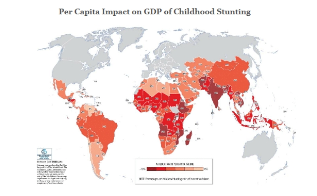 Per Capita Impact on GDP of Childhood Stunting.
