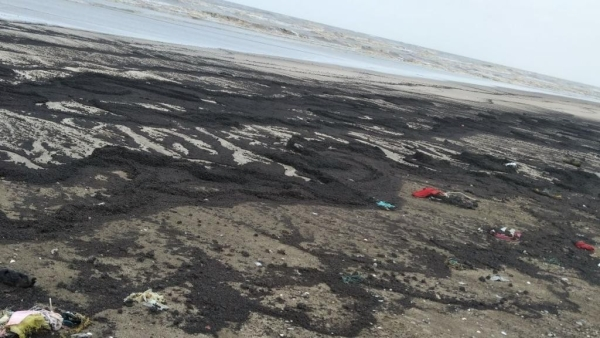 The presence of the lumps of solid crude mean there has been an oil spill in the area.