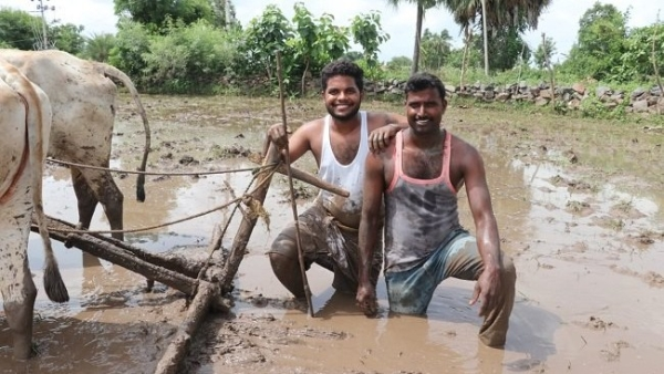 Two farmers from Lambadipalli village did the Kiki challenge with a twist – danced next to a pair of bullocks in a field, while the bullocks dragged the plough.