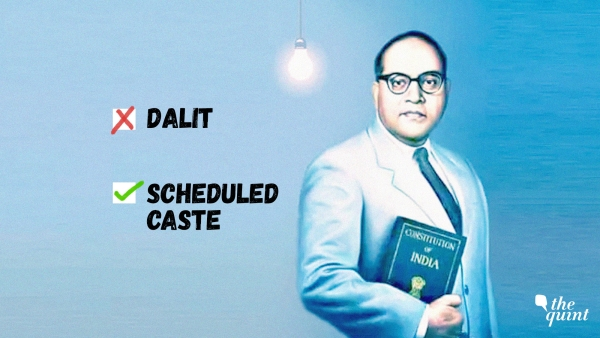 Controversy over the word 'Dalit': For petitioner Pankaj Meshram, 'Scheduled Caste' is a constitutionally valid word.