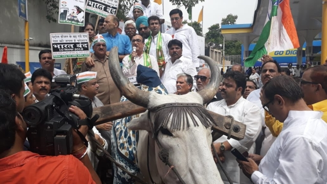 Congress workers led by Ajay Maken carried a motorcycle on a bullock cart.