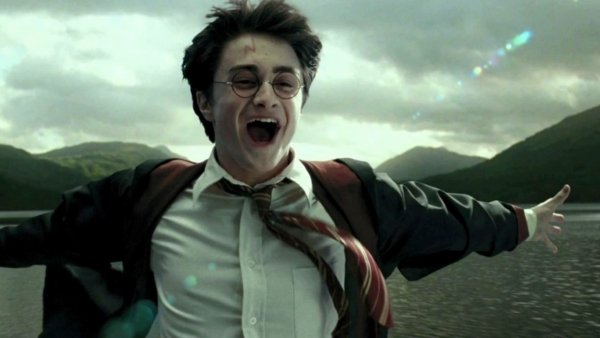 I was oblivious to the extraordinary sway of the Harry Potter series.