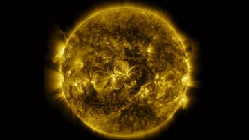 An image of the sun shot by NASA.