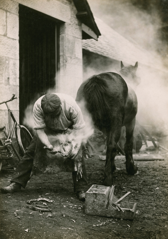 A farmer buring the hoof of a horse before shoeing it in Scotland, May 1921.