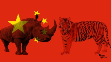 China's decision to partially allow the use of rhino horn and tiger bone leaves potential loopholes for illegal wildlife trade to thrive.