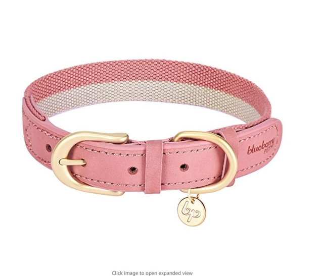 Distributor For Dog Collar