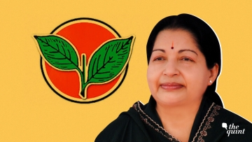 Two leaves in search for a custodian two years after 'Amma'.