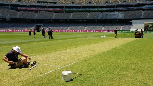 WACA head curator Brett Sipthorpe unveiled a green top for India's second Test against Australia.