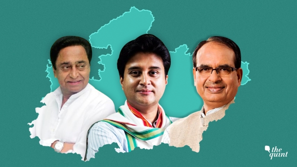 MP Results: Midnight Drama Ensues, Both Cong & BJP to Approach EC