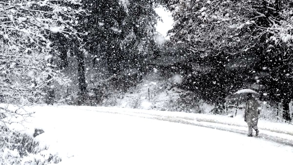 Srinagar received fresh snowfall and we cannot stop drooling!
