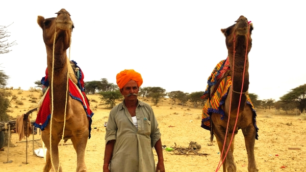 As a part of The Quint's election coverage, we reached the Sam desert in Jaisalmer, Rajasthan to learn what a day in the lives of a camel breeder entails.