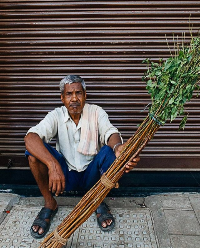 A <i>datoon-wallah </i>waits for customers to buy his teeth-cleaning Neem twigs