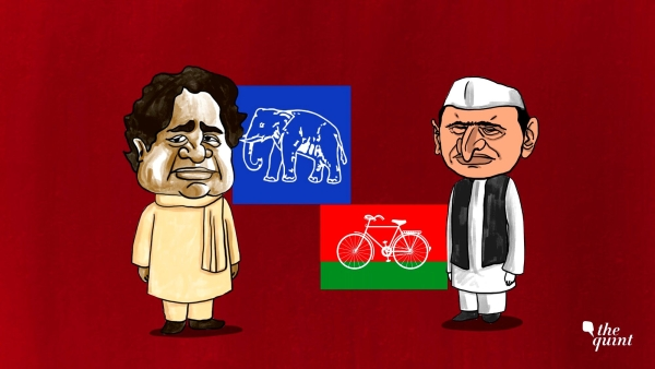 BSP-SP Alliance is an Attempt to Resurrect Behenji and Defeat BJP