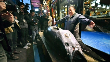 A bluefin tuna fish was sold at an auction in Tokyo's famed Tsukiji market for 333.6 million yen i.e. three million dollars.