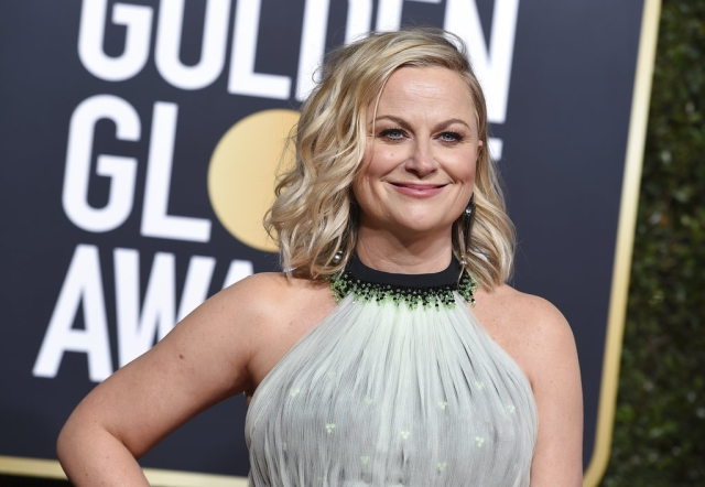 Amy Poehler on the red carpet.