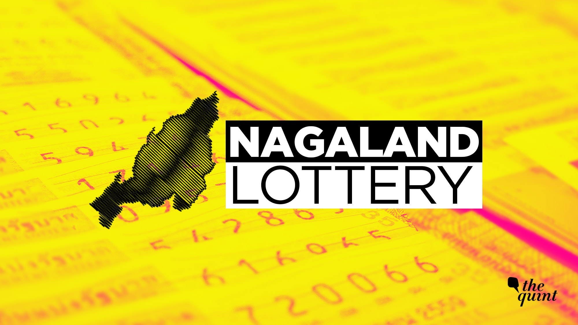 Nagaland State Lottery: Dear Flamingo Evening Results at 8 pm
