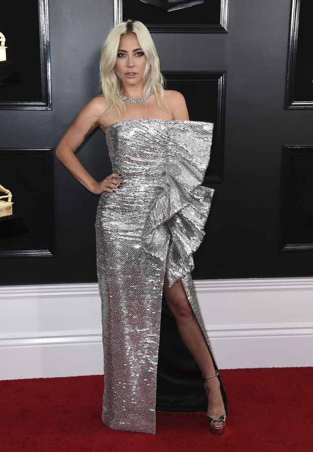 Lady Gaga poses in a gorgeous silver gown.