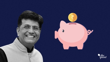 Image of Interim Finance Minister Piyush Goyal used for representational purposes.