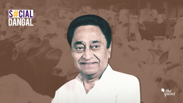 Kamal Nath-led government in MP invoked the National Security Act against three individuals for cow slaughter.