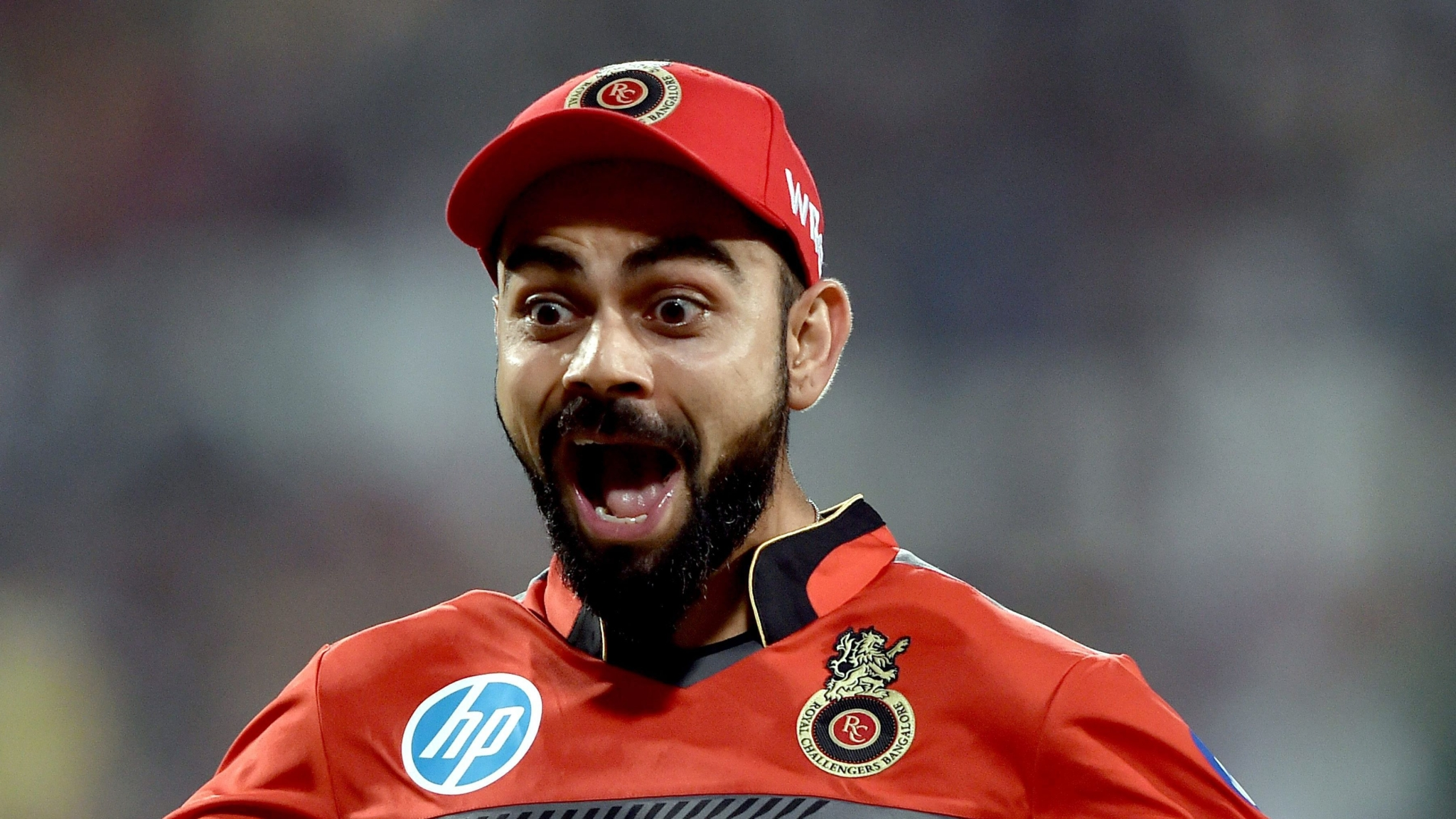 IPL: How Royal Challengers Bangalore Fared in the Past Seasons